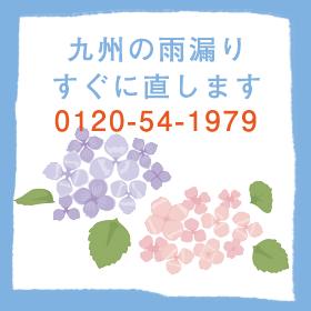 mukai_amamori
