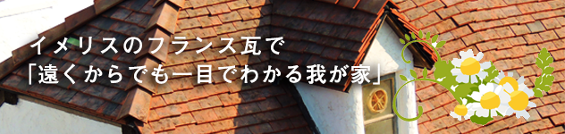 mukai_banner1